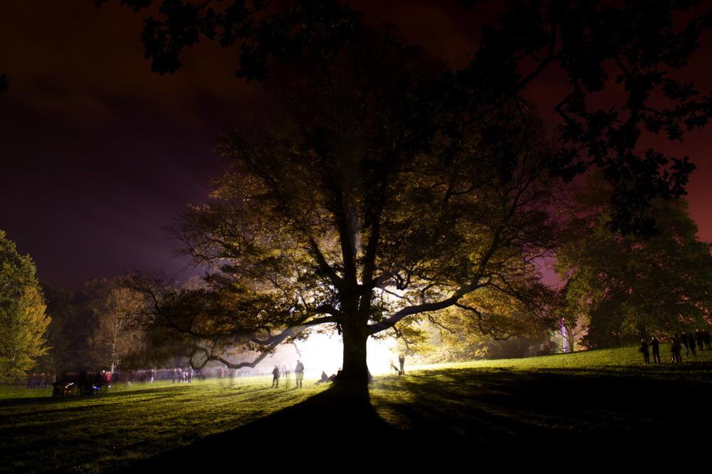 fuckyeahphotography: Tree in Earlham Park, Norwich Charlie Wallis Follow here please!