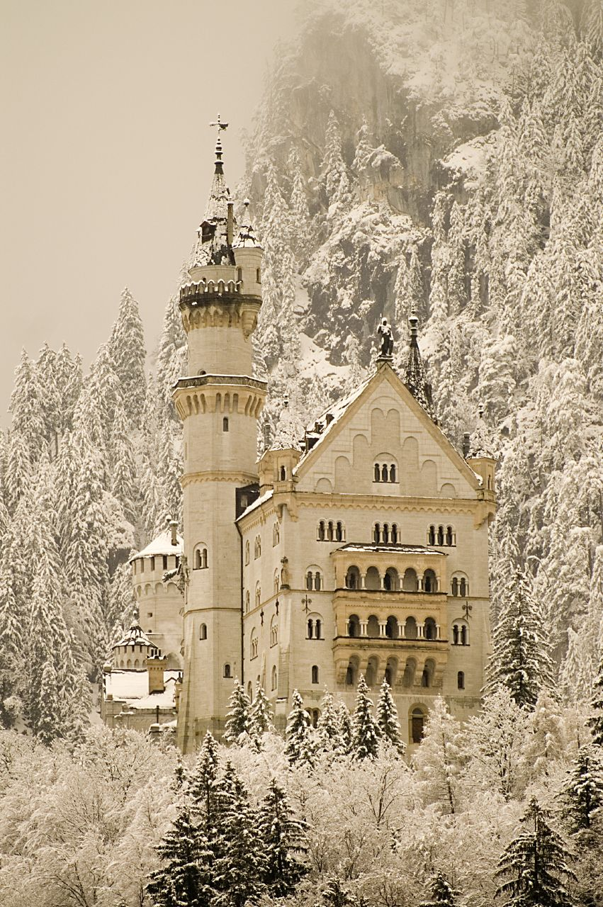 misswallflower: The Snow Queen lives here, beware.