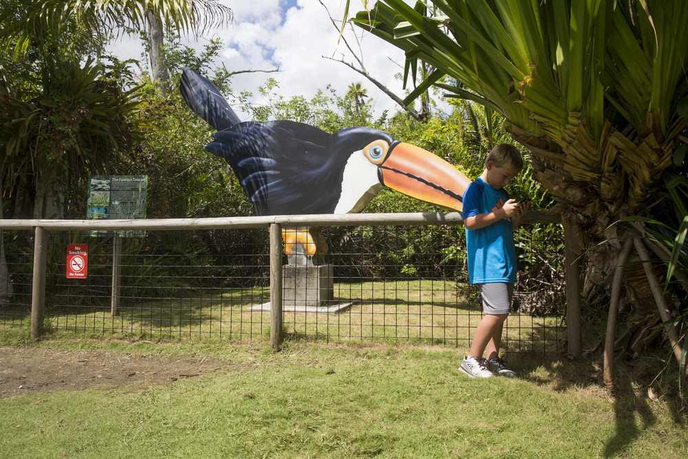 Alex Moore, 7, of Virginia Beach, plays Pokémon Go in the shade of the designated Pokémon gym at the Naples Zoo on July 15, 2016 in Naples, Florida. Zoo volunteers placed Pokémon Go lures throughout the Zoo from 10 am to 4 pm so visitors could play at a Pokémon gym, 15 Pokéstops and other locations throughout the park.