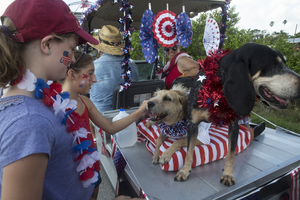Presley Helten, 10, left, and Kaitlyn Hous, 10, pet Lucy and Ellie Mae before the early-bird Fourth of July Parade on July 2, 2015 in Everglades City, Florida.