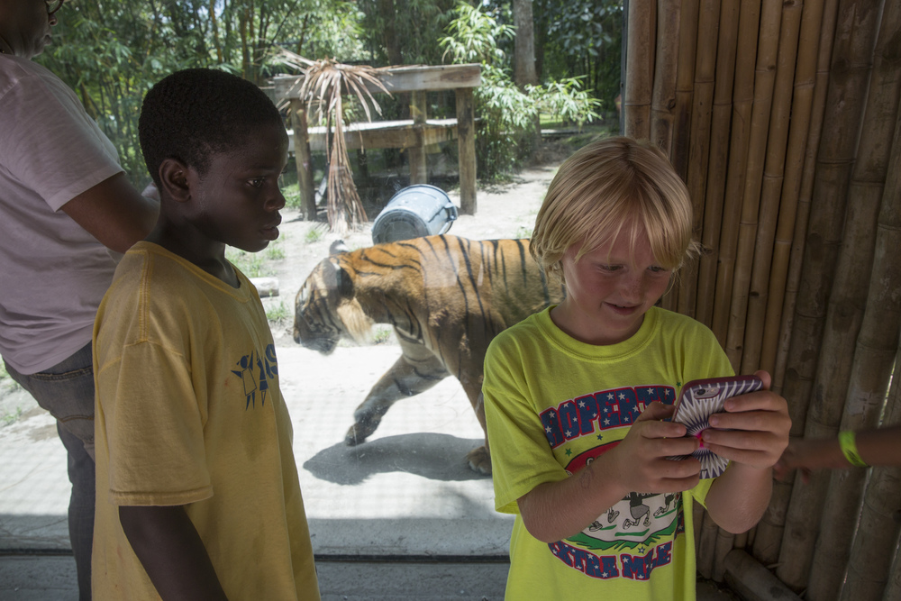 Liam Marshall, 9, plays Pokémon Go at the tiger pen in the Naples Zoo on July 15, 2016 in Naples, Florida.