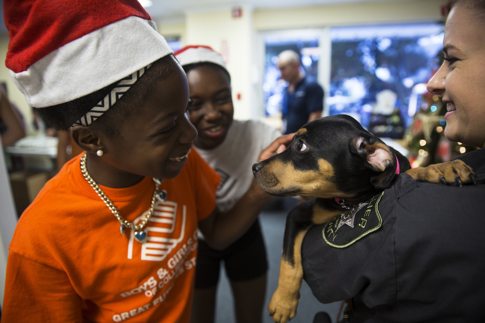 Belinda Dantus, 13, pets one of the puppies at a Meals of Hope event on July 25, 2016 in Naples, Florida.