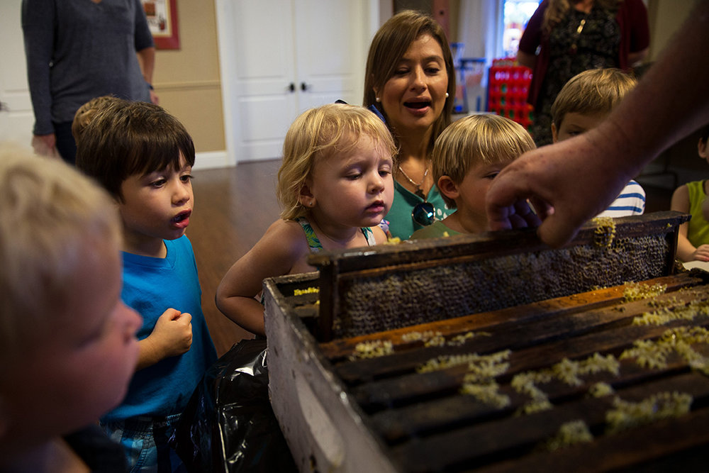 Valentina Westberg, 2, center, looks at a honeycomb up close during the Honey Factory presentation to the Naples Preschool of the Arts classes at The Chabad of Naples on Wednesday, Sept. 28, 2016 in Naples, Florida. Honey is traditionally accompanied with all the food on Rosh Hashanah, which symbolizes the Jewish New Year and Day of Atonement.