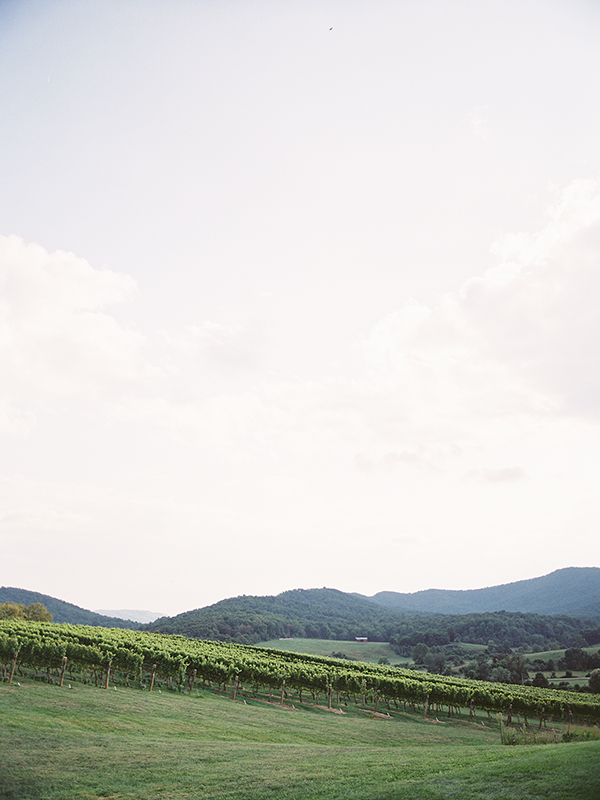 wedding at pippin hill farm and vineyards030.jpg