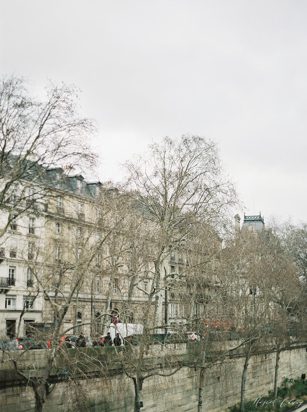 misty days in Paris03.jpg