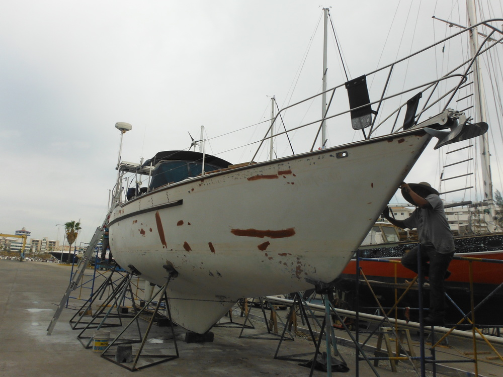 DSCF0959.JPG