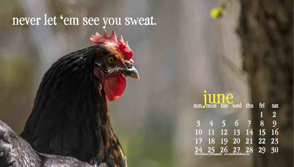 june screen saver digitized.jpg
