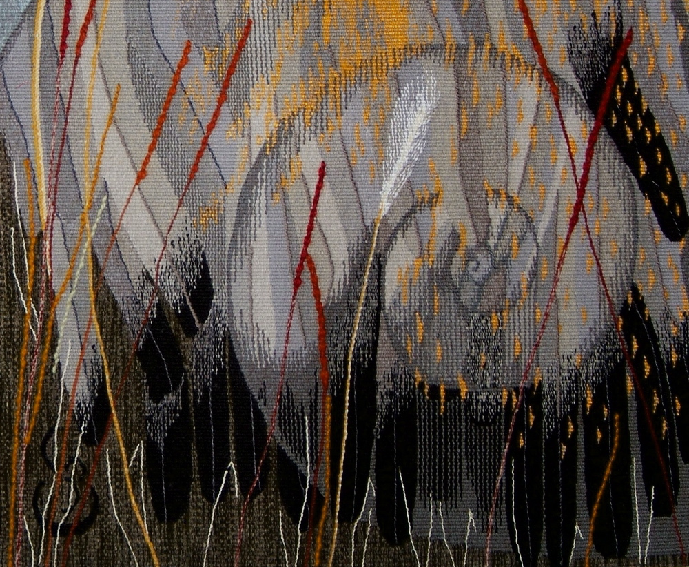 """Fossil, Feather, Light:  the Texture ofMemory"" detail"