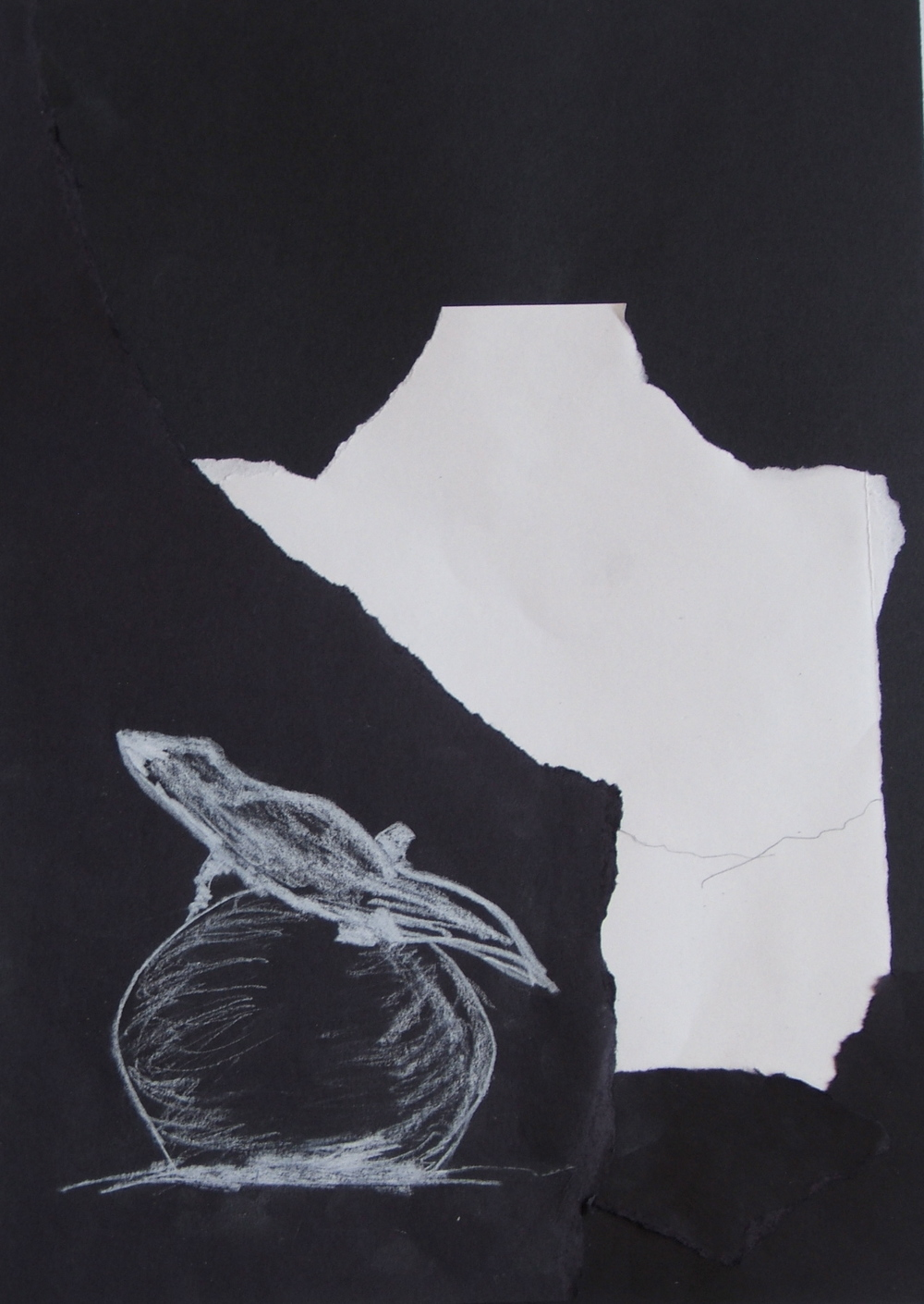 Kathy Neece collage and sketch with white pencil from 2013 Ghost Ranch class