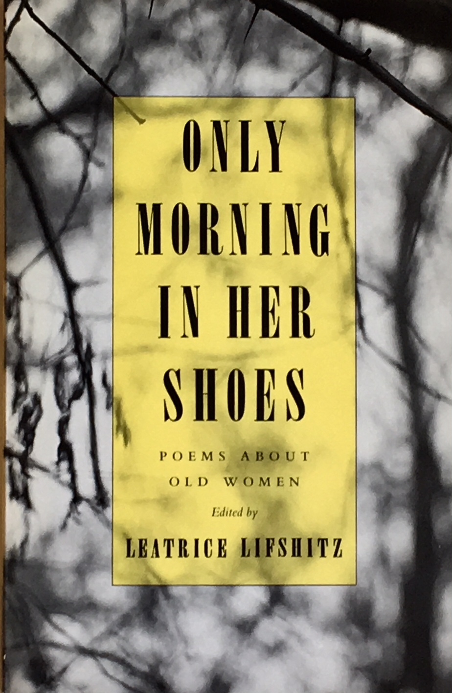 PhyllisHoge_Book_OnlyMorningInHerShoes.jpg