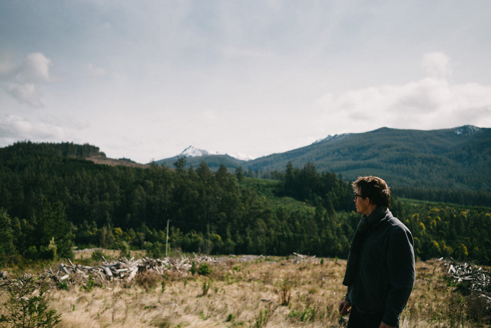 20150906_TasmaniaRoadtrip_124527-Nick-Bedford,-Photographer-Australia, Leica M Typ 240, Mount Field National Park, Road Trip, Summarit 35mm, Tasmania, Travel, VSCO Film.jpg