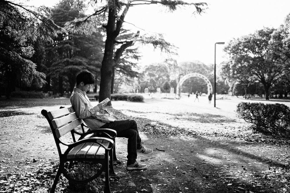 Yoyogi Park.