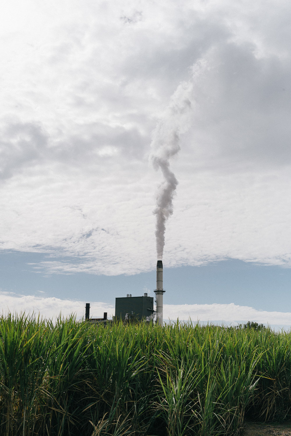 Sugar cane mill in Murwillumbah.