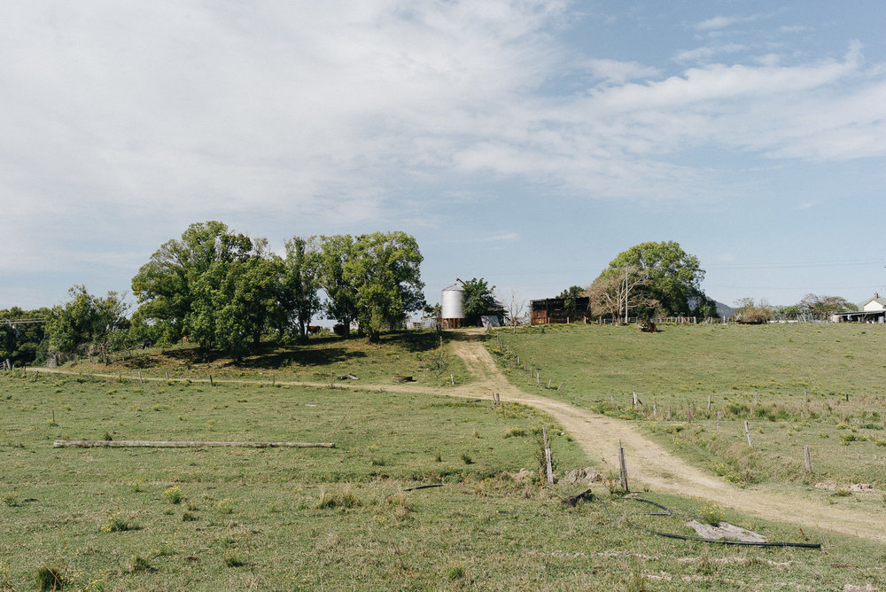 Farmlands in northern NSW.