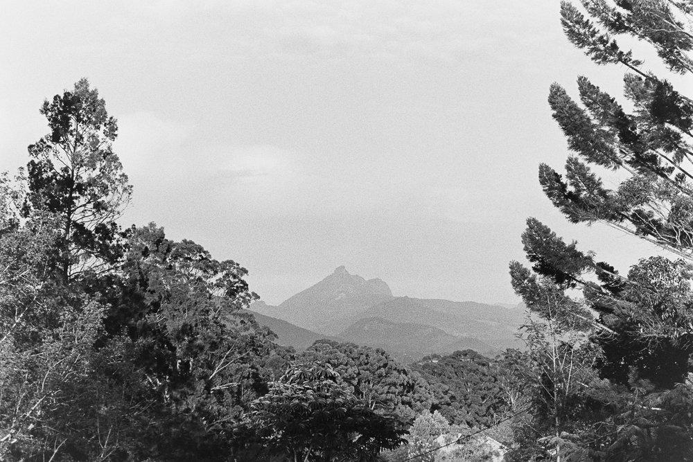 20170903 - Roll 153 - 007-Nick-Bedford,-Photographer-Black and White, Film, Kodak Tri-X 400, Murwillumbah, Nikkor 50mm F1.8 AI-s, Nikon FA.jpg