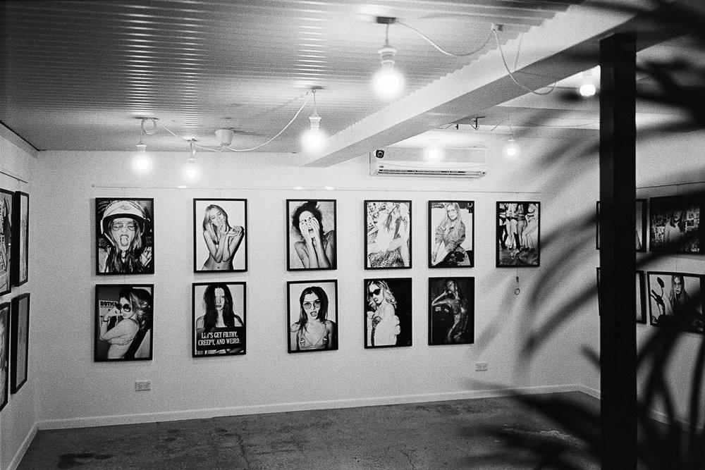 Racquet Film  gallery.