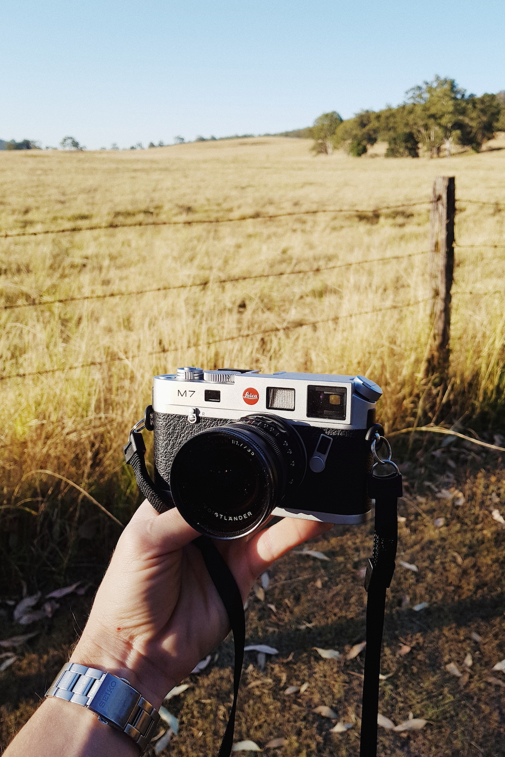 Leica M7 loaded with Kodak Portra 160 at Mount Barney National Park.