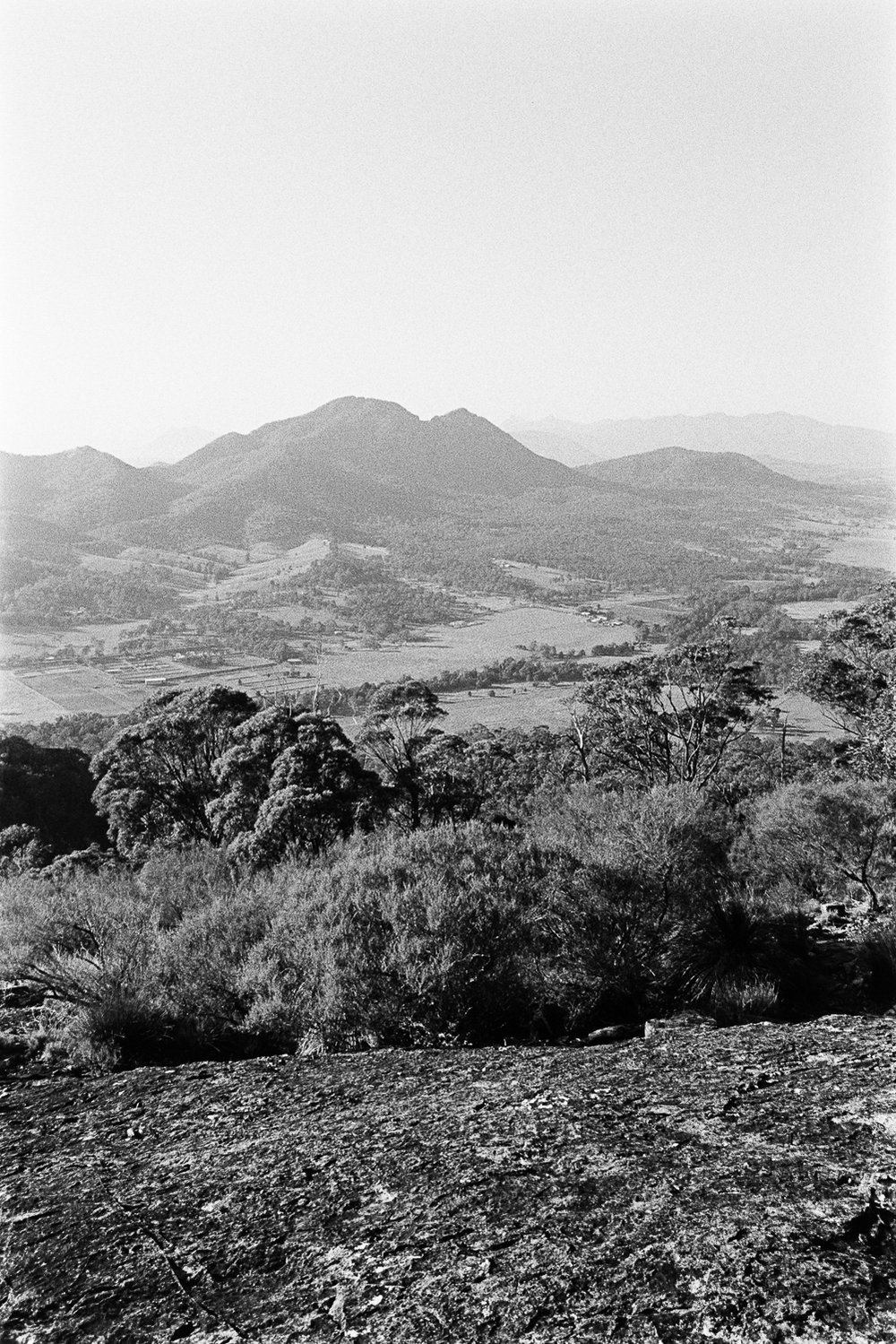 Mount Greville on 28mm TRI-X.