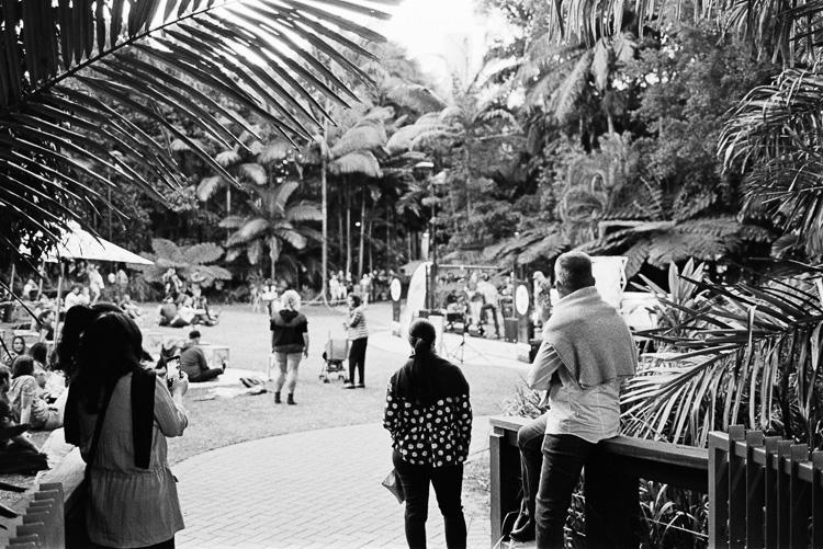 Tropical Brisbane.
