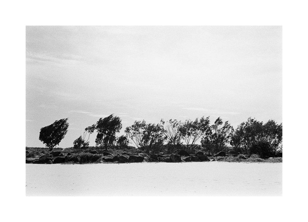 20181103 - Roll 263 - 015-Nick-Bedford,-Photographer-Black and White, Currumbin Rocks, Kodak TRI-X 400, Leica M7, Seascape, Voigtlander 35mm F1.7.jpg
