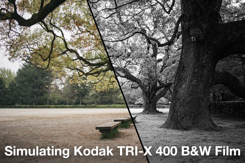 Simulating kodak tri x black white film nick bedford photographer