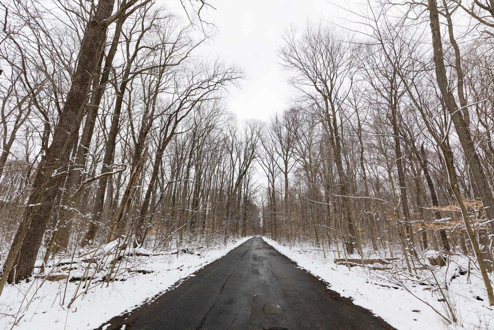 Hueston Woods Snow Road