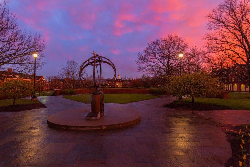 Sundial Pink Vivid
