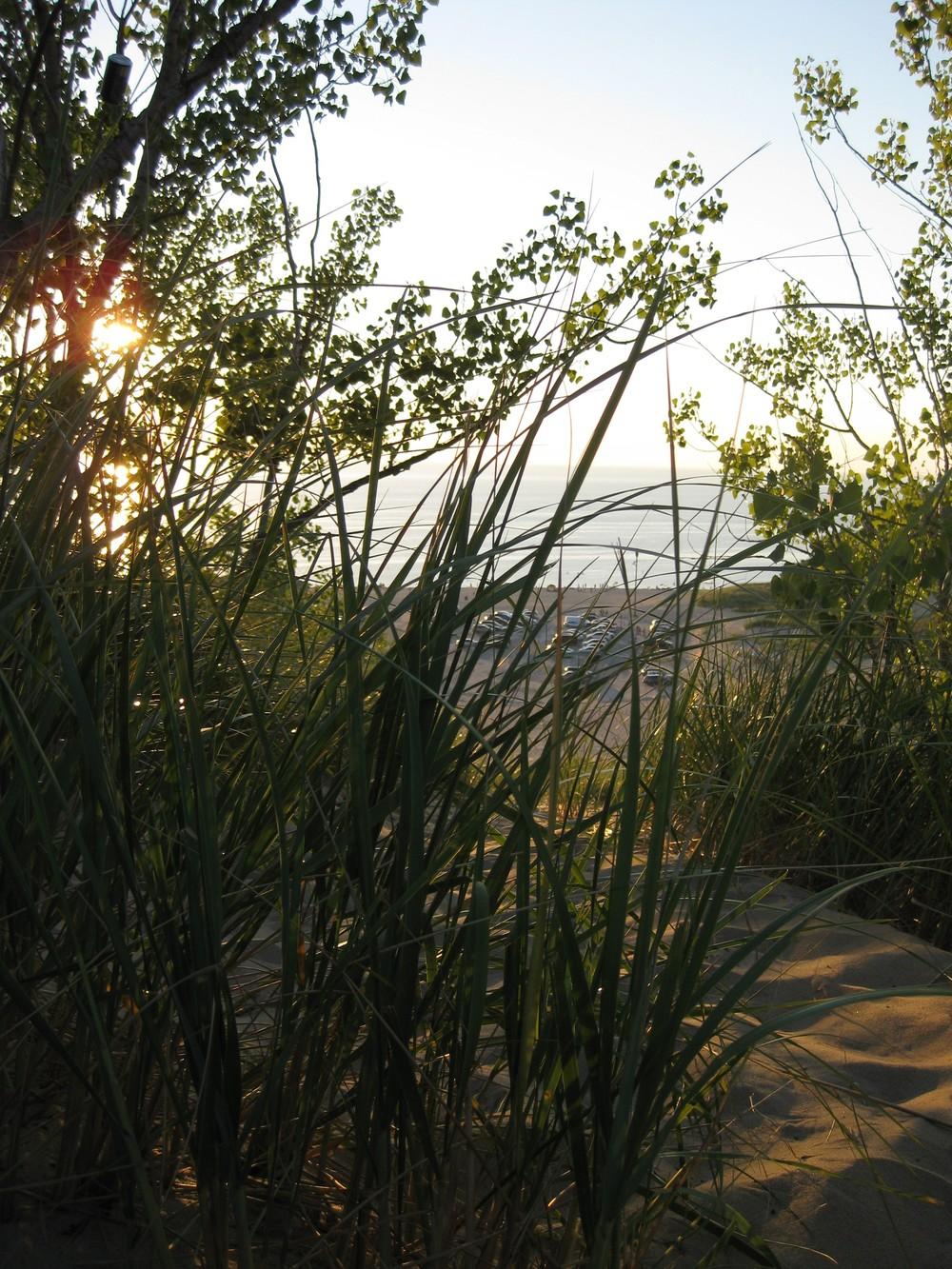 Sunset at the beach - Warren Dunes