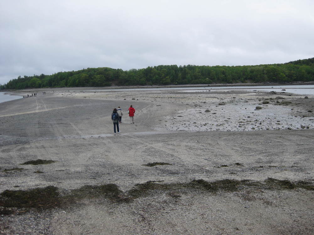 Crossing at low tide to Bar Island