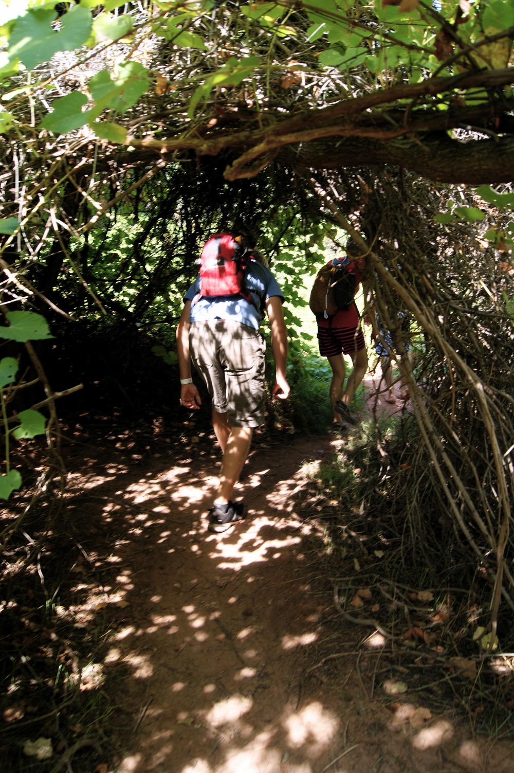 Trekking to Beaver Falls