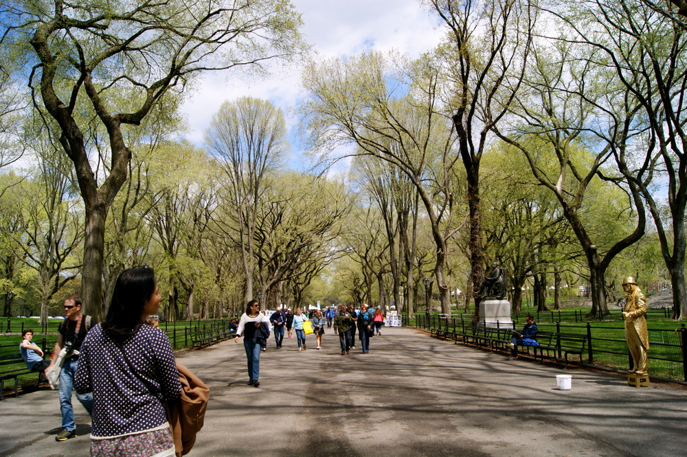 Thoroughfare of Central Park