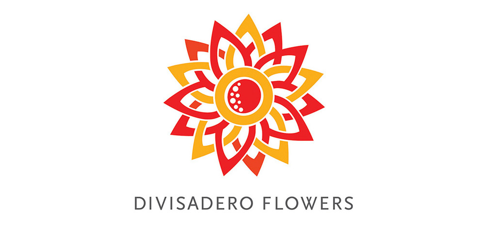 Divis_logo2.jpg