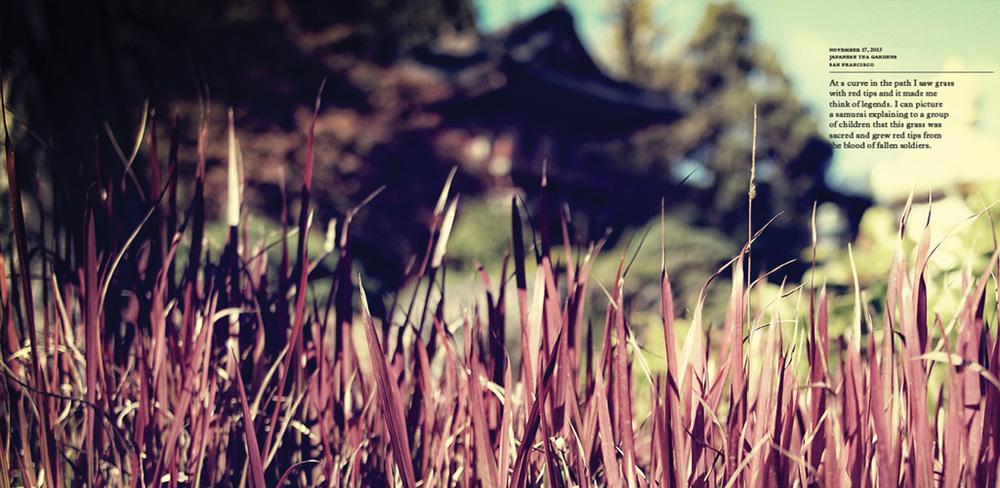 Lost_6.jpg