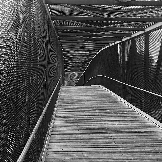 Your path is never straight and level. Shit gets weird. #mountainview #walk #blackandwhitephotography