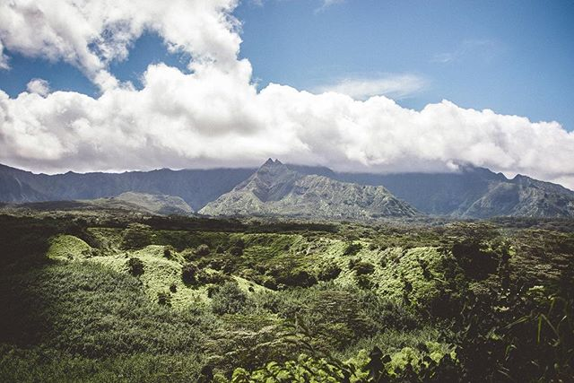 Amazing view of a valley before enjoying the great @kauaibackcountry tubing adventure!