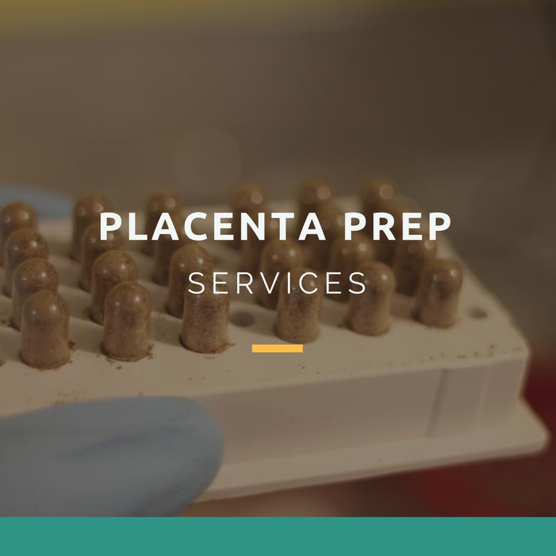 Placenta.png