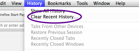 In the History menu, click on Clear Recent History...