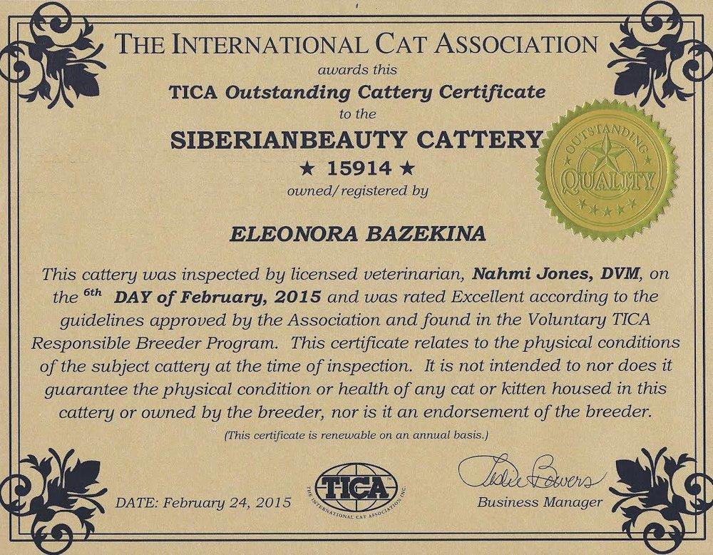 Tica_Award.jpg