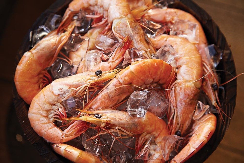 Shrimps in a bucket.jpg