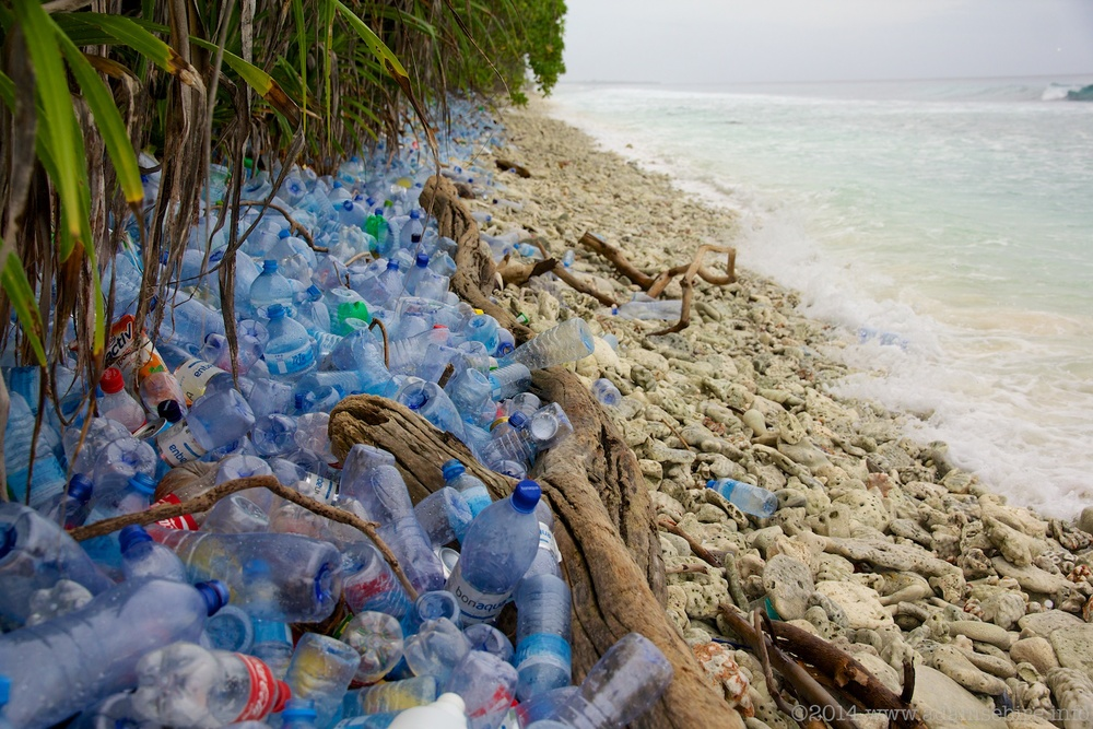 Plastic bottle waste — Maldives