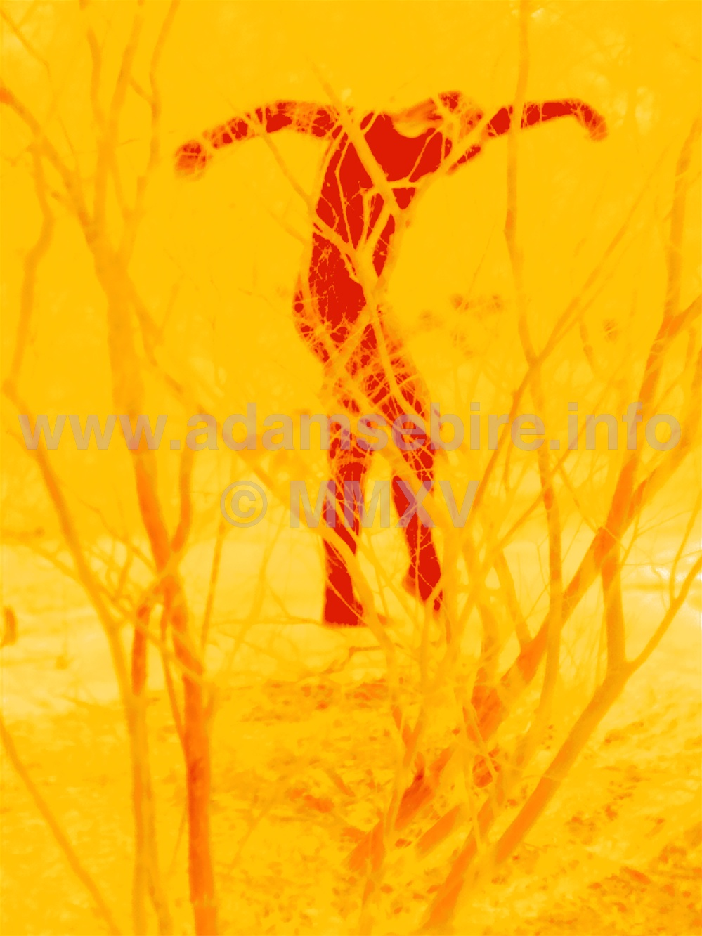 Climate change and the anthropocene - thermographic art