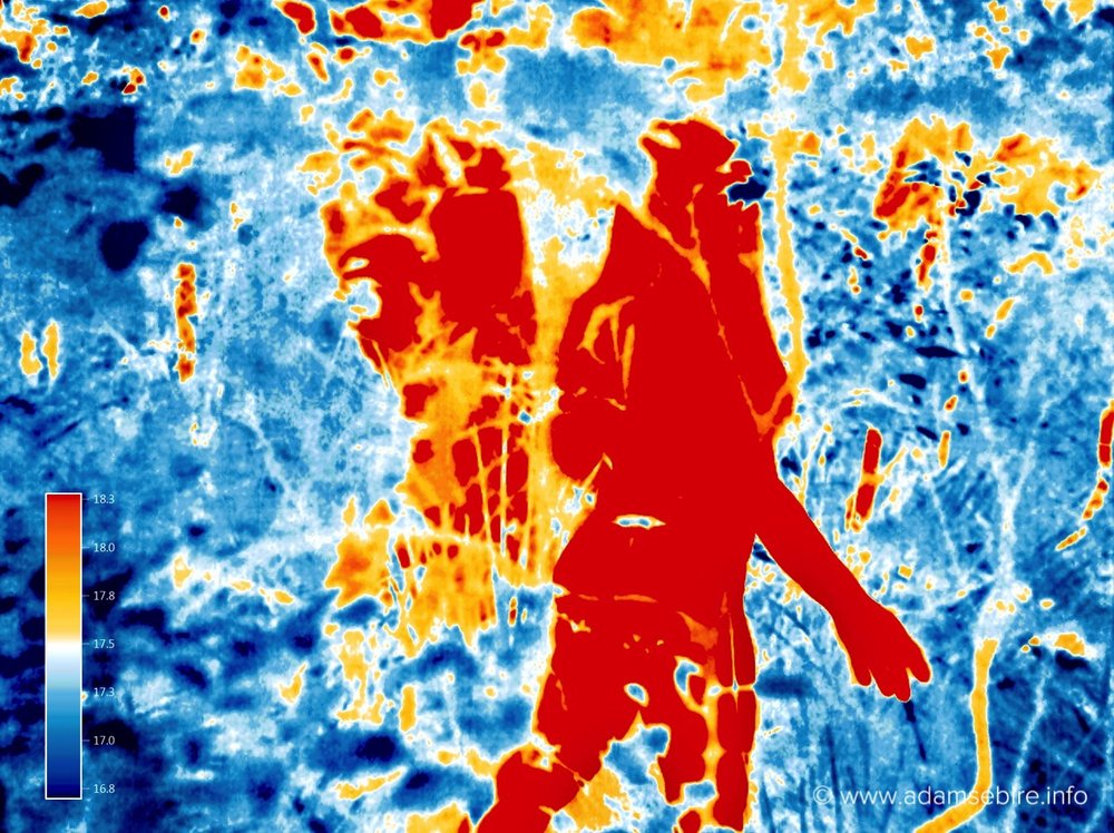 Anthropogenic global warming - infra-red thermal image art