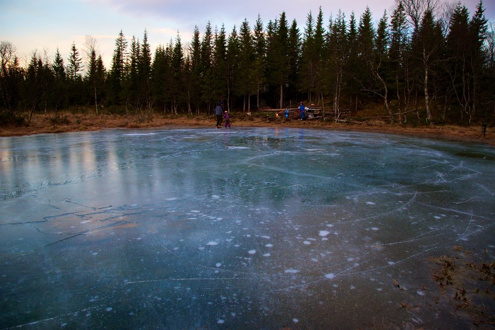 Methane bubbles rise to the surface of a lake in the Arctic