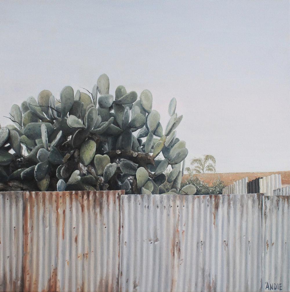 A Cactus