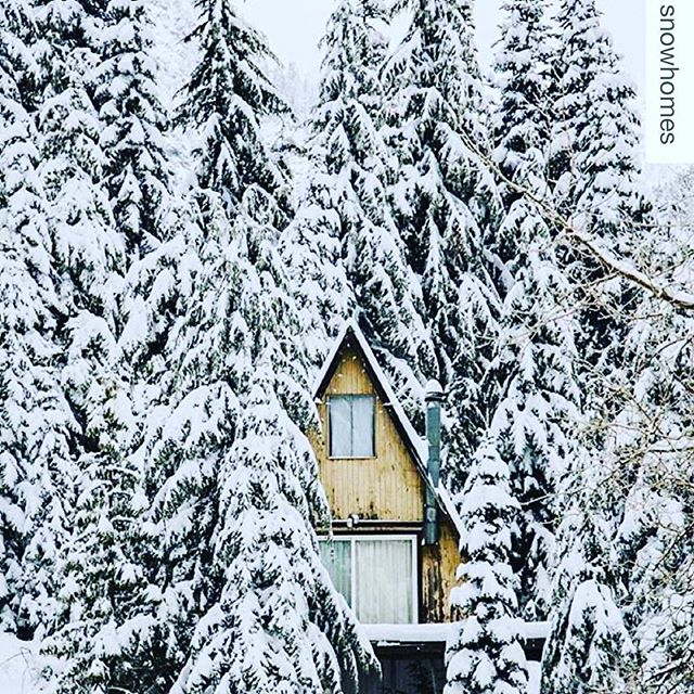 For those that think SoCal is all sun.... If you get tired of the sand you can head to the snow #RPBLQ #Repost @snowhomes ・・・ Just a few hours away from the coast sits an A-frame cabin tucked away in the San Bernardino mountains, Big Bear, California . 🏔🐻 | #california #bigbear #bigbearlake #snowvalley #lakearrowhead #bluejays #cali #sanbernardino #mountains #mountainliving #adventure #travel #snow #powder #freshpow #luxury #realestate #resorts #hotels #discover #explore #findyourpassion #ski #skiing #cabinlove #snowboarding #tistheseason #snowhomes @visitbigbear