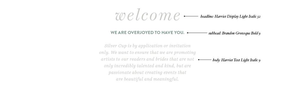 SilverCup5.jpg