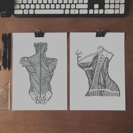 Szervmandala printek - Organmandala prints, originals