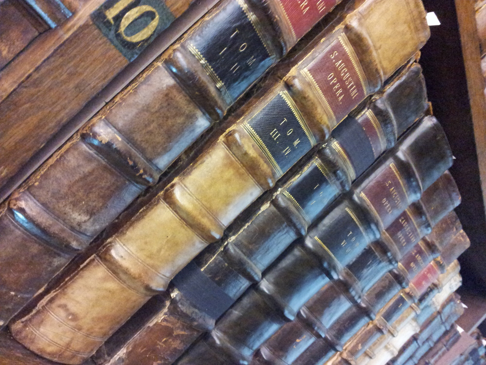 Old leather books in the Fellows library, with gold leaf inscriptions and corded spines. Image copyright: Julia Bremble