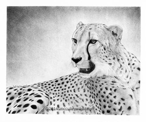 Cheetah print size: 8 x 10