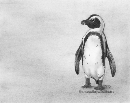 South African penguin print size 8 x 10